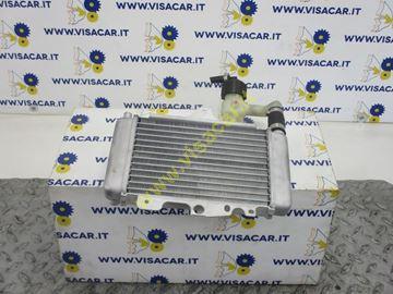 Immagine di RADIATORE ACQUA MOTOCICLO MOTO MALAGUTI CENTRO 160 IE -2009-