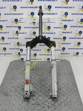 Immagine di FORCELLA ANTERIORE COMPLETA MOTO MALAGUTI BLOG 125 -2009-